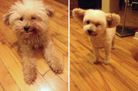 Coco Before-After